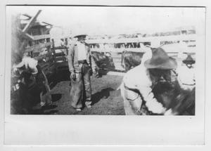 Primary view of object titled '[Men in a Pen with Cows]'.