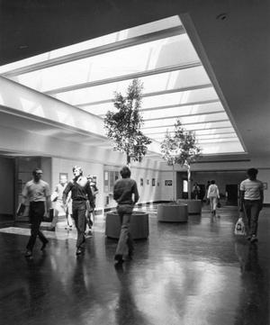Primary view of object titled '[Skylights and Plants in Corridor]'.