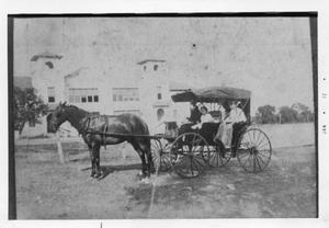 Primary view of object titled '[Walsh Family with horse & buggy]'.