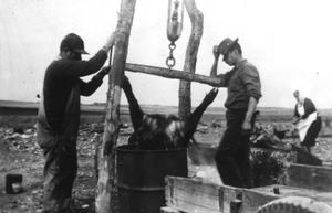 Primary view of object titled '[Men hog butchering in a barrel with wooden wagon]'.