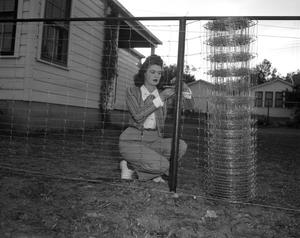 Primary view of object titled 'Martha Stinchcomb Building a Fence around the House She Built]'.
