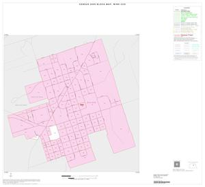Primary view of object titled '2000 Census County Subdivison Block Map: Wink CCD, Texas, Inset A01'.