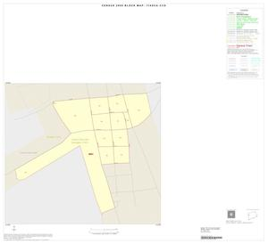 Primary view of object titled '2000 Census County Subdivison Block Map: Itasca CCD, Texas, Inset A01'.