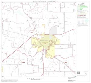 Primary view of object titled '2000 Census County Subdivison Block Map: Bridgeport CCD, Texas, Block 7'.