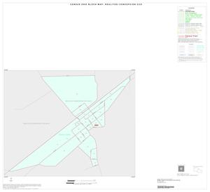 Primary view of object titled '2000 Census County Subdivison Block Map: Realitos-Concepcion CCD, Texas, Inset A01'.