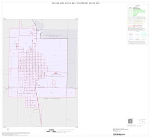 Primary view of object titled '2000 Census County Subdivison Block Map: Aspermont South CCD, Texas, Inset A01'.