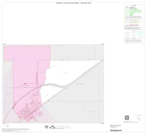 Primary view of object titled '2000 Census County Subdivison Block Map: Louise CCD, Texas, Inset A01'.