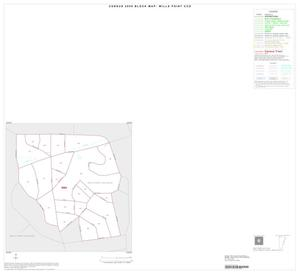 Primary view of object titled '2000 Census County Subdivison Block Map: Wills Point CCD, Texas, Inset A01'.