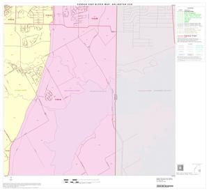Primary view of object titled '2000 Census County Subdivison Block Map: Arlington CCD, Texas, Block 14'.