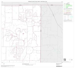 Primary view of object titled '2000 Census County Subdivison Block Map: Winters CCD, Texas, Block 4'.