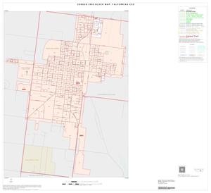 Primary view of object titled '2000 Census County Subdivison Block Map: Falfurrias CCD, Texas, Inset A01'.