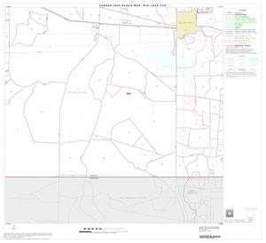 Primary view of object titled '2000 Census County Subdivison Block Map: Big Lake CCD, Texas, Block 11'.