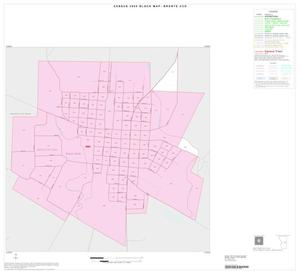 Primary view of object titled '2000 Census County Subdivison Block Map: Bronte CCD, Texas, Inset A01'.