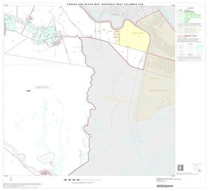 Primary view of object titled '2000 Census County Subdivison Block Map: Brazoria-West Columbia CCD, Texas, Block 14'.