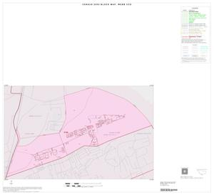 Primary view of object titled '2000 Census County Subdivison Block Map: Webb CCD, Texas, Inset C01'.