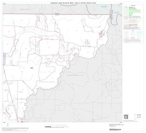 Primary view of object titled '2000 Census County Subdivison Block Map: Eola-Paint Rock CCD, Texas, Block 2'.