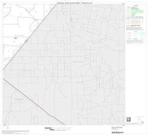 Primary view of object titled '2000 Census County Subdivison Block Map: Pecos CCD, Texas, Block 13'.