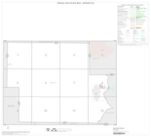 Primary view of object titled '2000 Census County Subdivison Block Map: Ingram CCD, Texas, Index'.