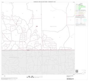 Primary view of object titled '2000 Census County Subdivison Block Map: Borger CCD, Texas, Block 21'.