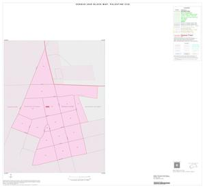 Primary view of object titled '2000 Census County Subdivison Block Map: Palestine CCD, Texas, Inset A01'.