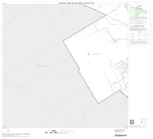 Primary view of object titled '2000 Census County Subdivison Block Map: Waco CCD, Texas, Block 13'.