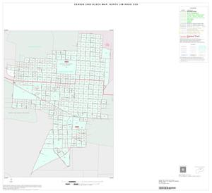 Primary view of object titled '2000 Census County Subdivison Block Map: North Jim Hogg CCD, Texas, Inset A01'.