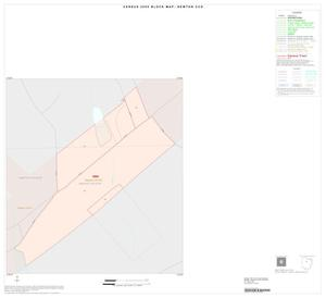 Primary view of object titled '2000 Census County Subdivison Block Map: Newton CCD, Texas, Inset A01'.