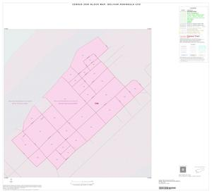 Primary view of object titled '2000 Census County Subdivison Block Map: Bolivar Peninsula CCD, Texas, Inset B01'.