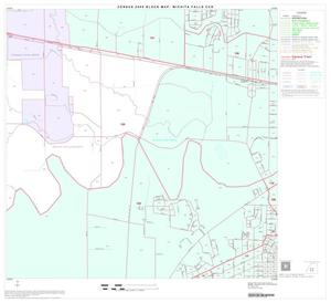 Primary view of object titled '2000 Census County Subdivison Block Map: Wichita Falls CCD, Texas, Block 11'.