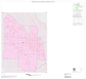 Primary view of object titled '2000 Census County Subdivison Block Map: Woodville CCD, Texas, Inset A01'.