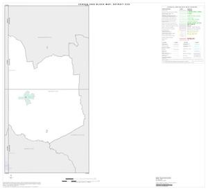Primary view of object titled '2000 Census County Subdivison Block Map: Detroit CCD, Texas, Index'.
