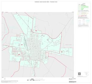 Primary view of object titled '2000 Census County Subdivison Block Map: Teague CCD, Texas, Inset A01'.