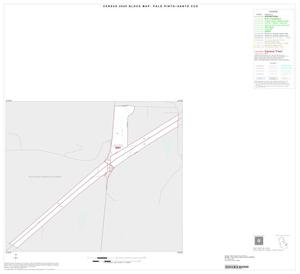 Primary view of object titled '2000 Census County Subdivison Block Map: Palo Pinto Santo CCD, Texas, Inset B01'.