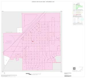 Primary view of object titled '2000 Census County Subdivison Block Map: Spearman CCD, Texas, Inset A01'.