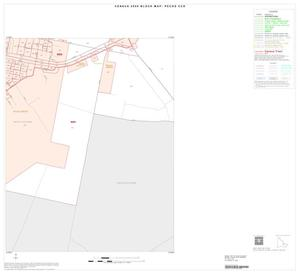 Primary view of object titled '2000 Census County Subdivison Block Map: Pecos CCD, Texas, Inset B05'.