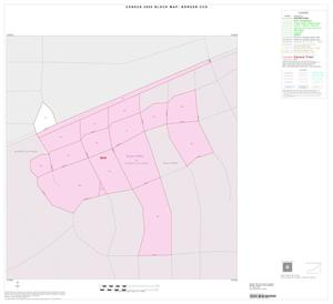 Primary view of object titled '2000 Census County Subdivison Block Map: Borger CCD, Texas, Inset B01'.