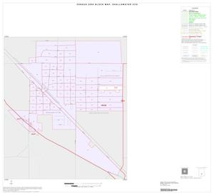 Primary view of object titled '2000 Census County Subdivison Block Map: Shallowater CCD, Texas, Inset A01'.