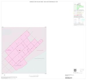 Primary view of object titled '2000 Census County Subdivison Block Map: Bolivar Peninsula CCD, Texas, Inset C01'.