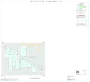 Primary view of object titled '2000 Census County Subdivison Block Map: Harlingen-San Benito CCD, Texas, Inset A01'.