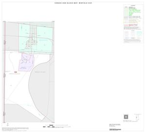Primary view of object titled '2000 Census County Subdivison Block Map: Winfield CCD, Texas, Inset A01'.