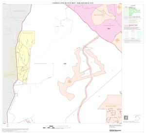 Primary view of object titled '2000 Census County Subdivison Block Map: San Antonio CCD, Texas, Block 20'.