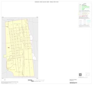 Primary view of object titled '2000 Census County Subdivison Block Map: Moulton CCD, Texas, Inset A01'.