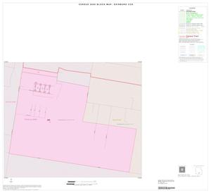 Primary view of object titled '2000 Census County Subdivison Block Map: Edinburg CCD, Texas, Inset B01'.
