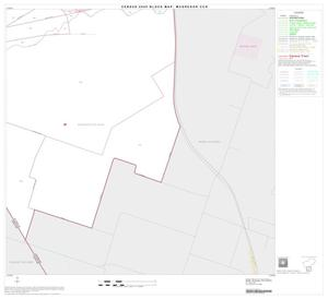 Primary view of object titled '2000 Census County Subdivison Block Map: McGregor CCD, Texas, Block 8'.