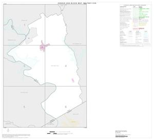 Primary view of object titled '2000 Census County Subdivison Block Map: Whitney CCD, Texas, Index'.