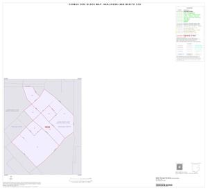 Primary view of object titled '2000 Census County Subdivison Block Map: Harlingen-San Benito CCD, Texas, Inset C01'.