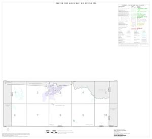 Primary view of object titled '2000 Census County Subdivison Block Map: Big Spring CCD, Texas, Index'.