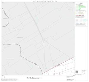Primary view of object titled '2000 Census County Subdivison Block Map: West Brazos CCD, Texas, Block 1'.