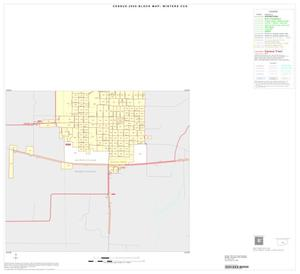Primary view of object titled '2000 Census County Subdivison Block Map: Winters CCD, Texas, Inset A03'.