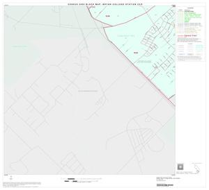 Primary view of object titled '2000 Census County Subdivison Block Map: Bryan-College Station CCD, Texas, Block 13'.